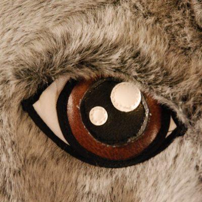 occhio tricheco