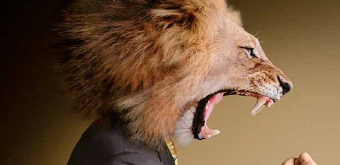 Testa di leone a mascotte